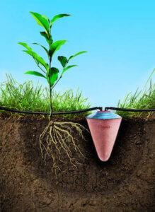 Clayola Bewässerngsystem in Aktion